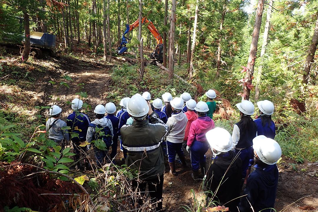 柳津町森林教室