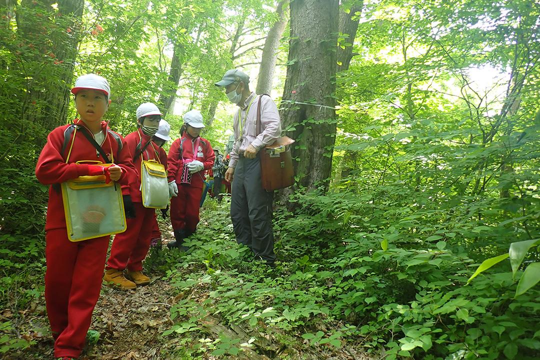 会津美里町森林環境学習