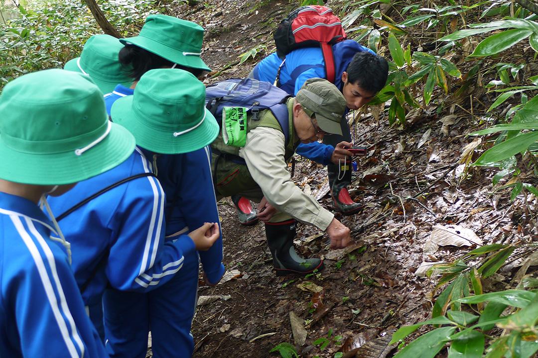 昭和村森林教室
